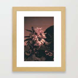 vida Framed Art Print