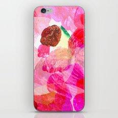 Palette iPhone & iPod Skin