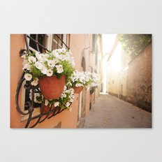 Lucca, Italy  Canvas Print
