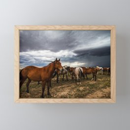 Pride - Horse Watches Over Herd as Storm Approaches Framed Mini Art Print