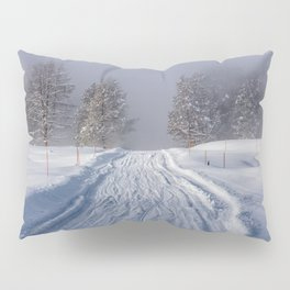 Yellowstone National Park - Road to Mud Volcano Pillow Sham