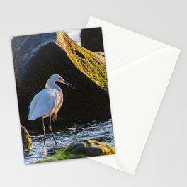 La Jolla Cove Fisher Stationery Cards