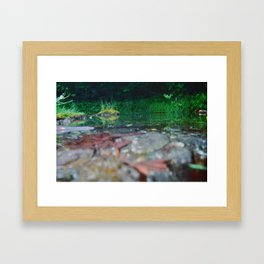 Before they came Framed Art Print