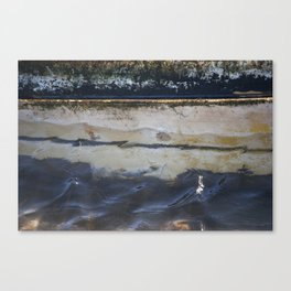 Watered  Canvas Print