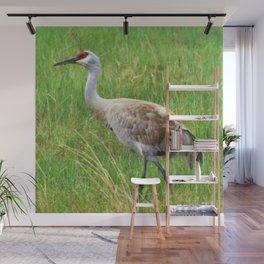 Bird Series: Sandhill Crane Wall Mural