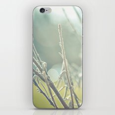 you're pretty when you're dead no.2 iPhone & iPod Skin