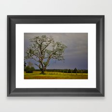 End of the Drought Framed Art Print