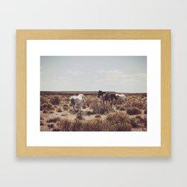 Behind the Horse Framed Art Print