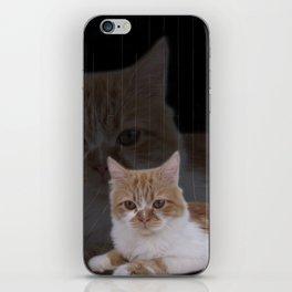 Dramatic Cat iPhone Skin