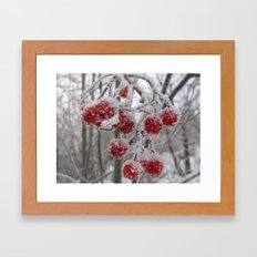 The Frost Framed Art Print