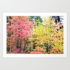 Watercolor Fall Art Print