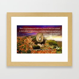 In Memory of Cecil The Lion Framed Art Print