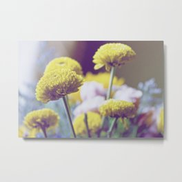 Cheery Yellow Flowers Spring Photography  Metal Print