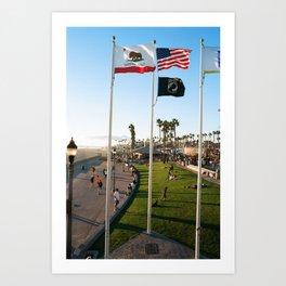 Waving Flags Art Print