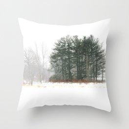 Winter in Ontario Throw Pillow