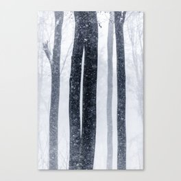 Snow Trees 2 Canvas Print
