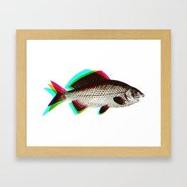 fish + fish + fish Framed Art Print