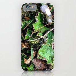 Spotted Lichen iPhone Case