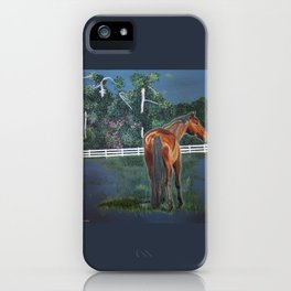 Looking On iPhone Case