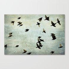 Birds Let's fly Canvas Print