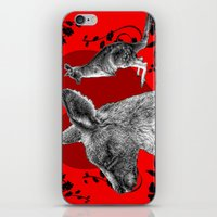 kangaroo iPhone & iPod Skins featuring Kangaroo by SwanniePhotoArt