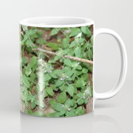 Little Purple Buds. Coffee Mug
