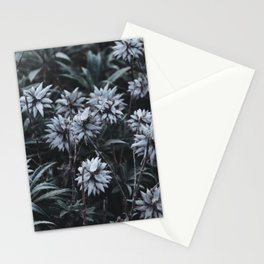 Cold Winter Mountain Flowers. Madeira Island, Portugal.  Stationery Cards