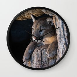 Mountain Lion in Cave Wall Clock