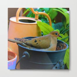 A Bird in a Bucket Metal Print