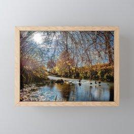 Baden-Württemberg : Water scenery Framed Mini Art Print