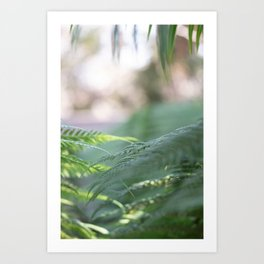 Feeling Fresh Art Print