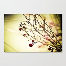 life in the winter Canvas Print