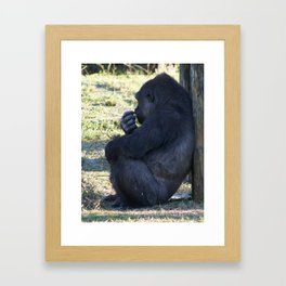A Shady Spot Framed Art Print