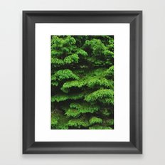Greenery I Framed Art Print