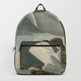 291 Herring Gull Backpack