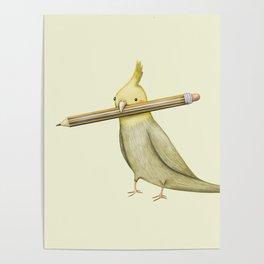 Cockatiel & Pencil Poster