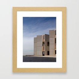 Salk Framed Art Print