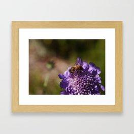 FlowerBee Framed Art Print