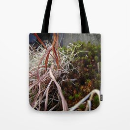 Dry Grass, Moss, and Rock Tote Bag