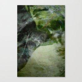 Serenity of Storm Canvas Print
