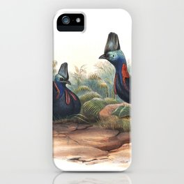 Southern Cassowary, tropical bird in the nature of Australia, New Zealand & Indonesia iPhone Case
