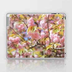 Pink Cherry Blossoms Laptop & iPad Skin