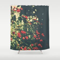 Summer Roses Series  - I -   Shower Curtain