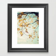 autumn glow Framed Art Print