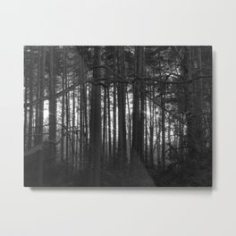 The magic of the woods Metal Print