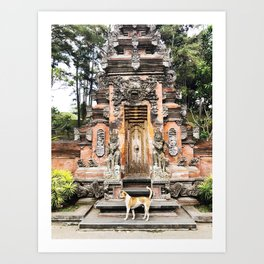 Bali temple dog Art Print