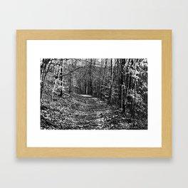 High Resolution  Framed Art Print