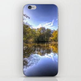 The Silent Pond iPhone Skin