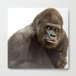 Gorille 6 Metal Print