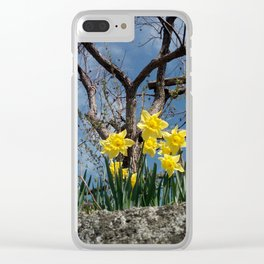 Yellow flowers in a house - Italy Clear iPhone Case